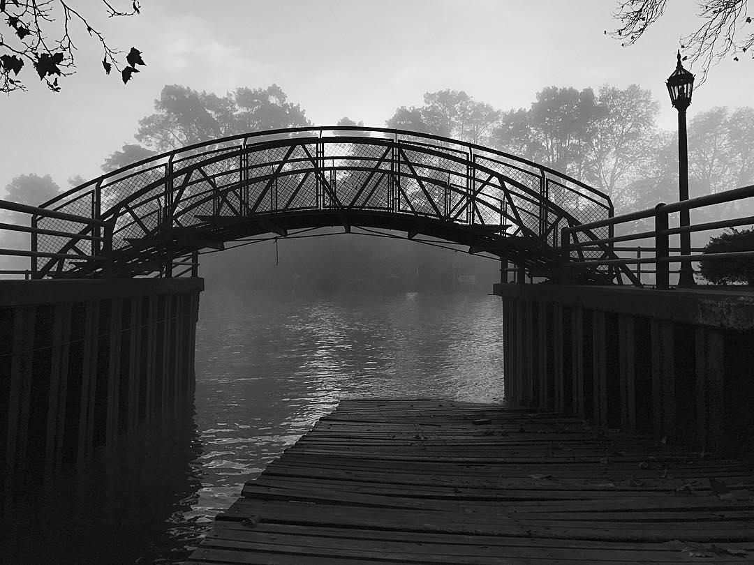 El puente #blackandwhite #blackandwhitephotography #bnw #tigre #buenosaires