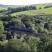 DMU 156 508 on Kinclair Viaduct. S.W. Scotland.