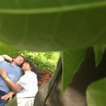 UNADJUSTEDNONRAW_thumb_16d1