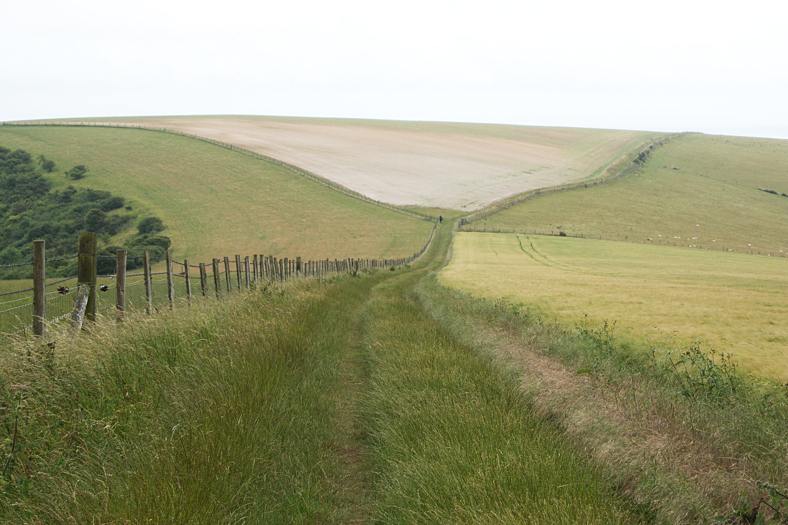 South Downs Way Southease to Seaford