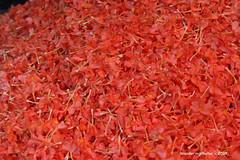 Orange flower petals - Devaraja Market Mysore Karnataka India
