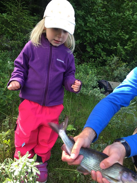 Sara's catch, Apple iPhone 6, iPhone 6 back camera 4.15mm f/2.2