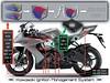 Kawasaki ZX-10R 1000 2009 - 29