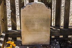 George William Swallow [1887]