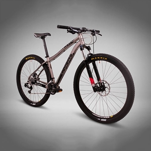 Picture of Mountain Bike RT1000