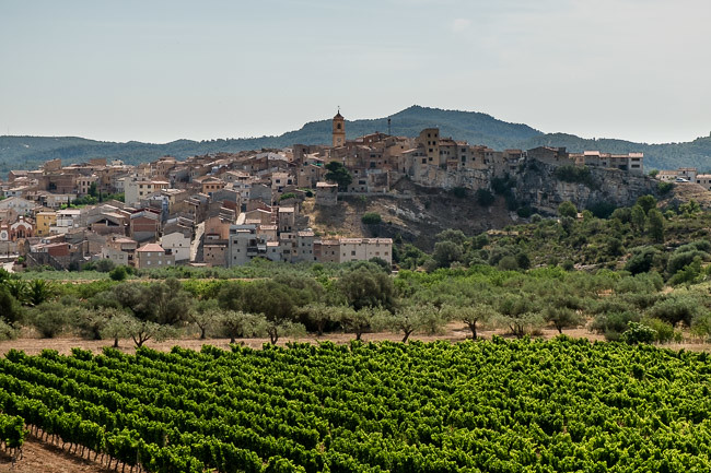 Catalonia Wine Tour