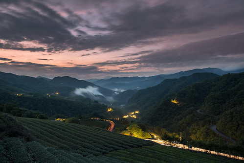 taiwan taipei 南山寺 坪林 漁光村 茶園 晨光 雲海 sunrise 琉璃光 bluehour 藍調時刻
