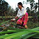 39037-022: Women's Development Centers in Cambodia
