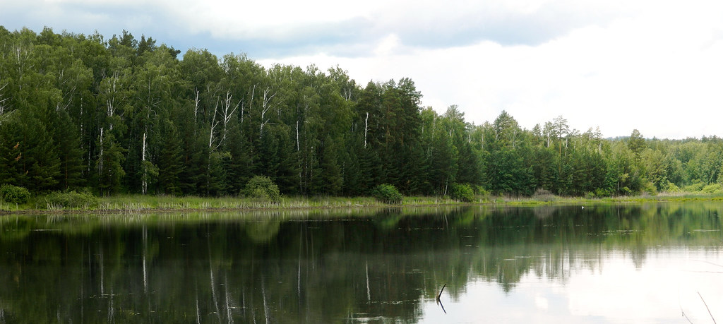 Панорама 342