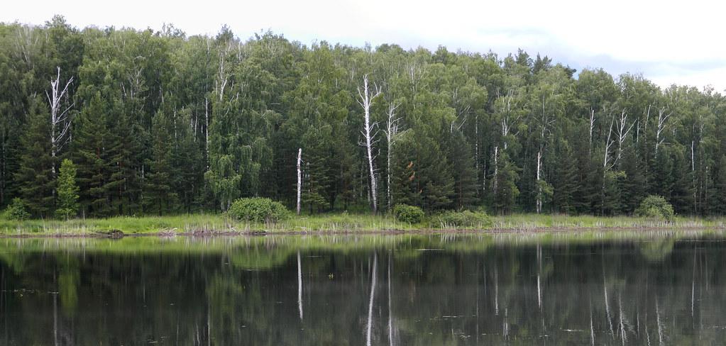 Панорама 341