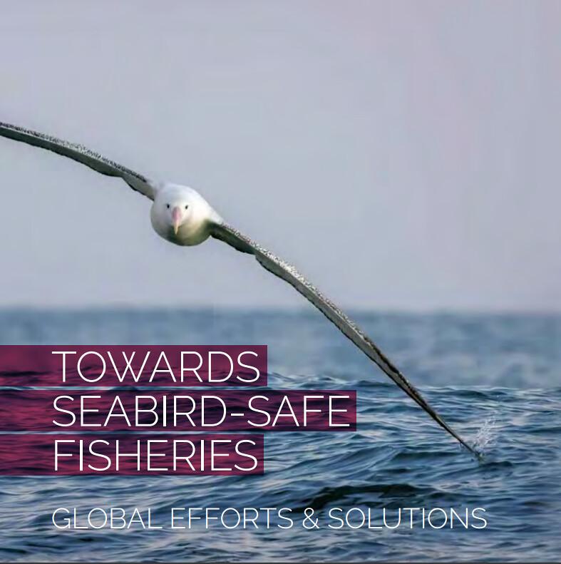 towards_seabird_safe_fisheries © BirdLife International