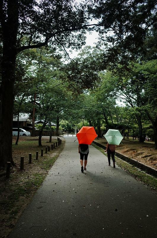二つの日傘