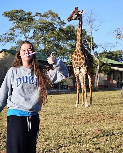 "When you're brushing your teeth and someone yells ""GIRAFFE!"" You run outside to snap a pic with this beauty #DukeIsEverywhere #DukeAdventures #GIRAFFE #OMG (PC @yonkinator via @dukestudents)"