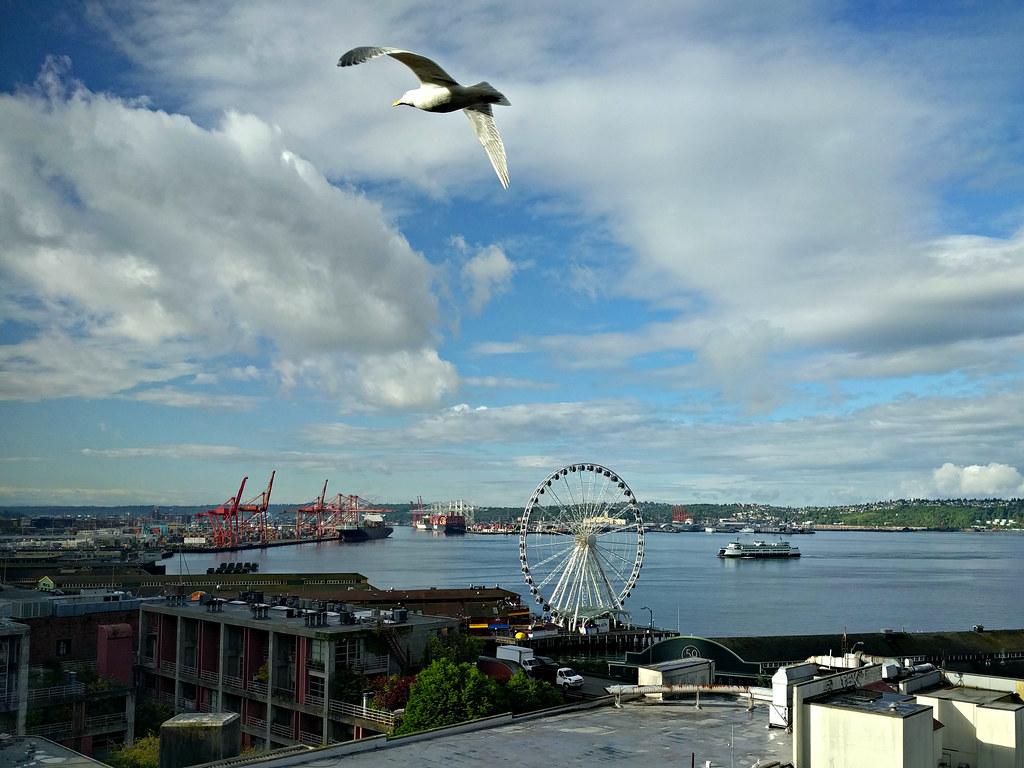 Hotels Close To Virginia Mason Hospital Seattle