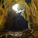 Gomantong Cave Interior (Lesley Hawkins)
