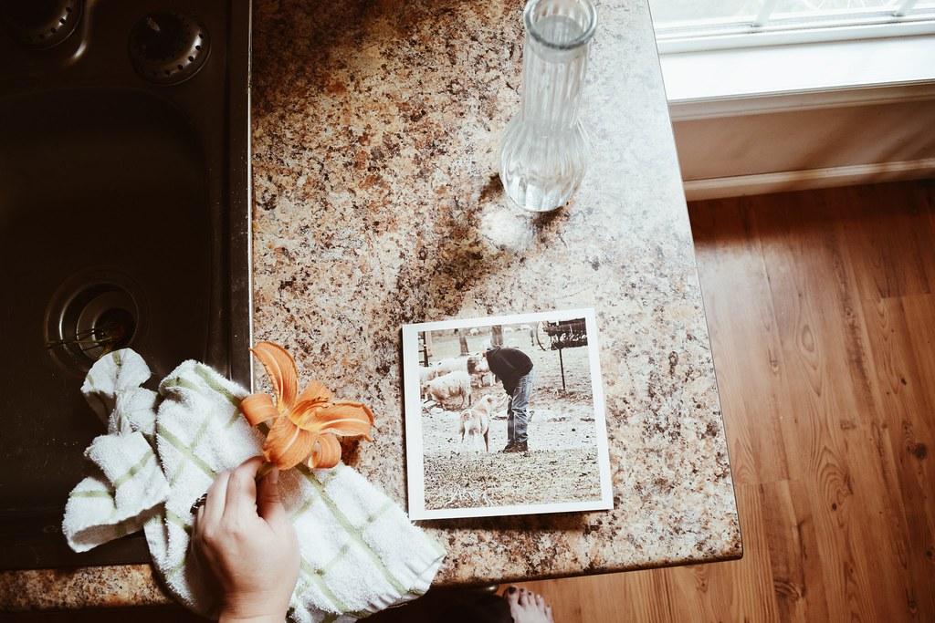 receivedmyphotobookinthemailanddoingsomeflowergardeningtoday06242017
