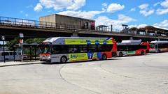 WMATA Metrobus 2015 New Flyer Xcelsior XN40 #2832