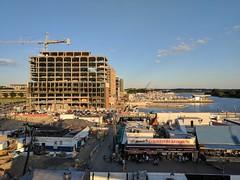 Cranes at the Wharf, 26 June 2017