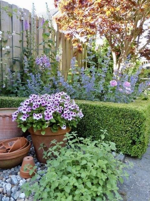Pot tuin landelijk