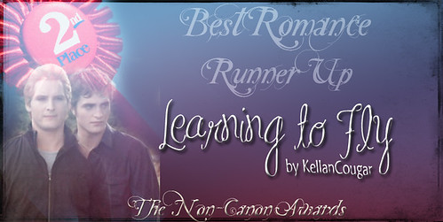 WINNER non-canon awards 2nd pl best romance