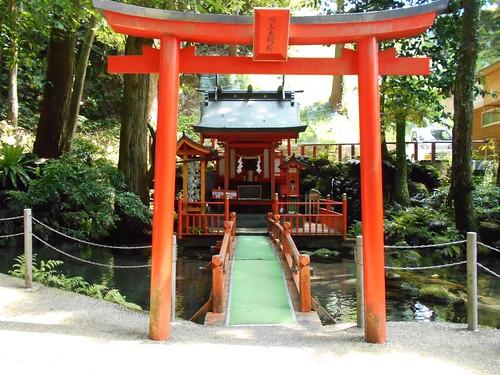 jp-tour-arret 2 (5)