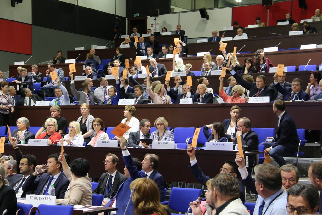 Voting on Resolutions at the Plenary Session of OSCE PA Annual Session in Minsk on 9 July 2017