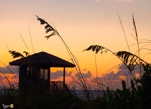 kyle lauzon kylelauzon mugshot beach ocean image sunrise