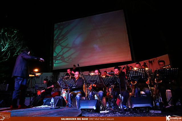 Salamander Big Band Mid Year Concert 2017 (15)