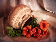 Unas flores y un jarrón