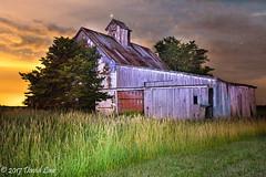 Summer evening at Gridley Barn