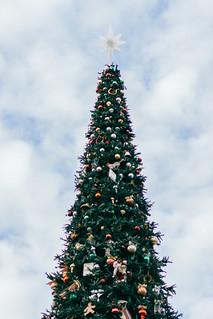 Christmas Time at Disneyland