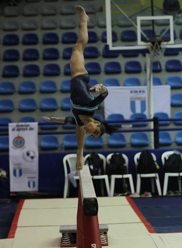 Final de gimnasia artística, categoría adultas, Festival GUA