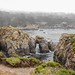 Small photo of Point Lobos State Reserve