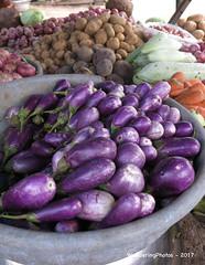 Aubergines - Vegetable Stall - Mahabalipuram Tamil Nadu India