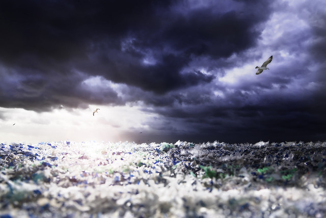 Drowning in plastic – a fine art photographer's bid to save our seas, Jürgen Muller