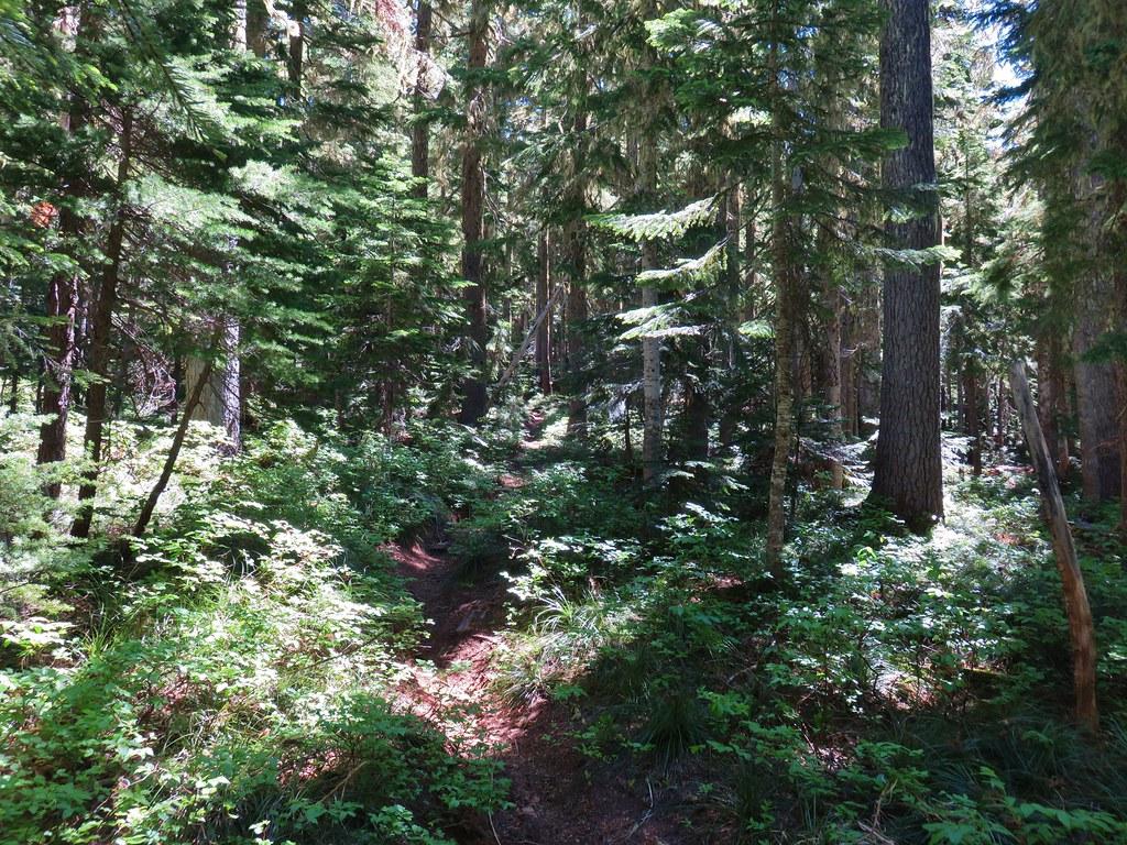 Hawk Mountain Trail