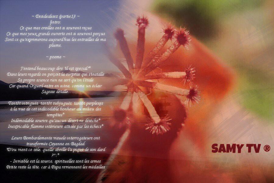 Poeme Intitulé Desidéalisez Partie1 I Wrote This Poem