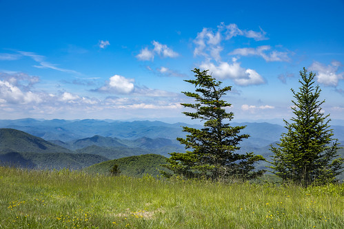 blueridge parkway mountains scenic scenery nature natural blue sky clouds shadows trees northcarolina sunny beautiful daytime haywood jackson waynesville sylva cowee byway roadway dslr markiv 5d
