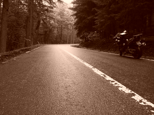 Route d'Ardennes
