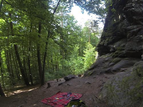 Pfalz 2017