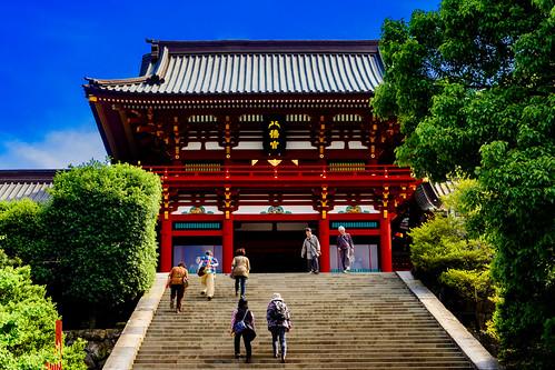 Main Shrine of Hachimangu Shrine : 鶴岡八幡宮本宮
