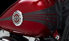 Harley-Davidson 1690 SOFTAIL BREAKOUT FXSB 2013 - 19