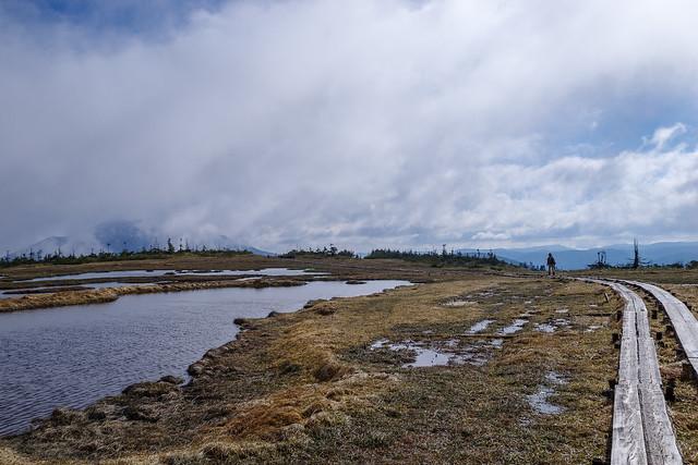 燧ケ岳の展望は雲に遮られる@アヤメ平