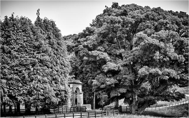 Streatlam Park ., Canon EOS 50D, Sigma 18-50mm f/2.8 Macro