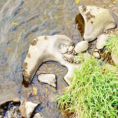 Stone shaped like an anchor in the River Deveron