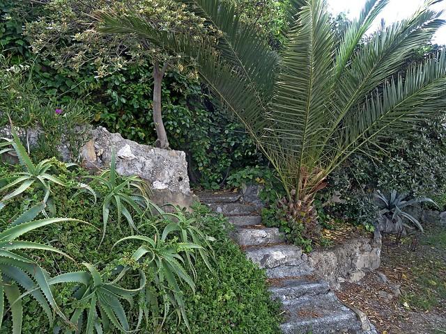scalinata in giardino ....EXPLORE, Sony DSC-HX50