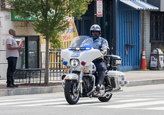 Metropolitain Police  (3)