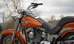 Harley-Davidson 1690 SOFTAIL FAT BOY FLSTF 2014 - 10