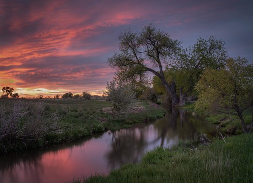sunrise sky reflection water irrigation farm ranch agriculture cottonwood bouldercounty colorado plains highplains ditch farmphotography coloradophotography sunrisephotography frontrangephotography