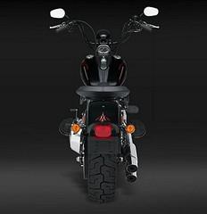 Harley-Davidson FLSTSB 1584 SOFTAIL CROSS BONES 2008 - 9